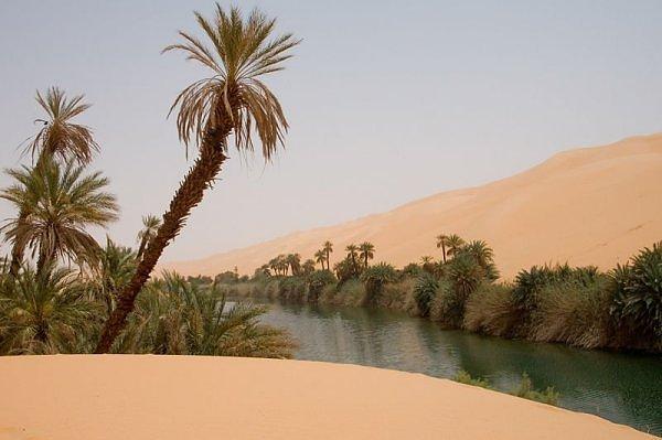 Oazė Saharoje