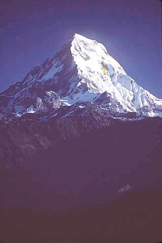 Anapurnai